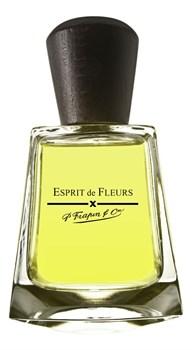 Frapin Esprit de Fleurs - фото 9554
